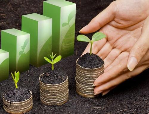 Flexible loans for small businesses: iZettle Cash Advance