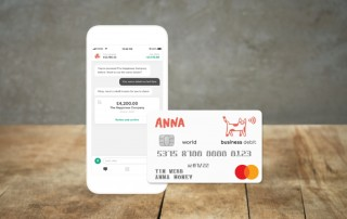 Anna Business account review