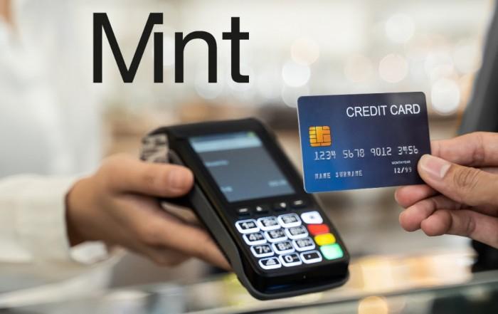 Mint Payments review